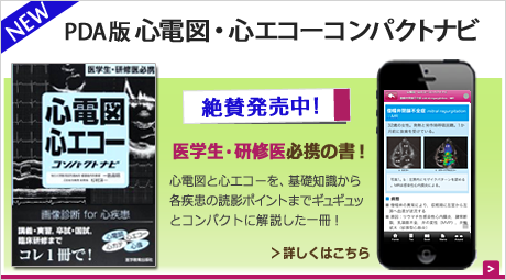 top-shinecho-nowonsale.png